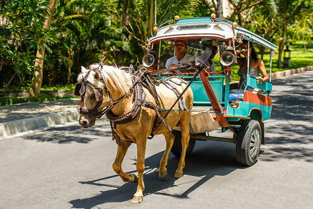 Banyumulek Village horse cart - great experience in lombok indonesia luxury tour
