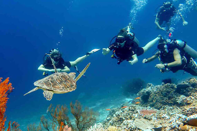 Diving In Gili Islands - best thing to do in indonesia