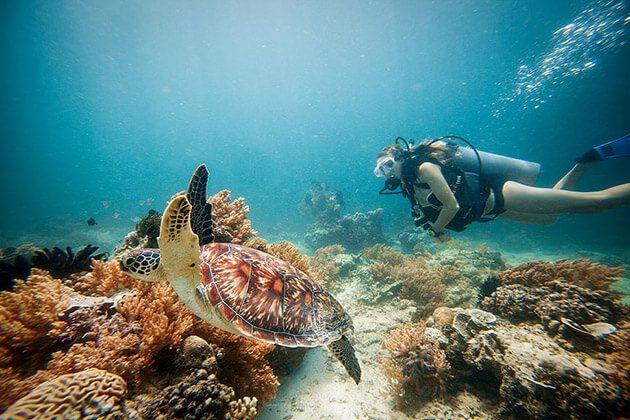 Gili Air snorkeling - indonesia luxury tour packages