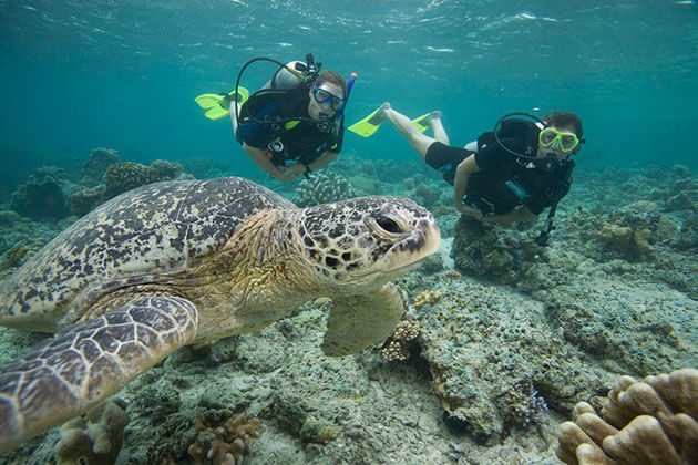 Indonesia adventure travel packages - diving in lombok
