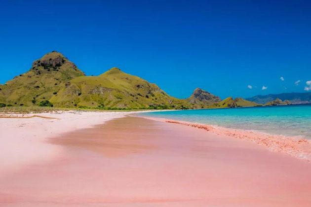 Komodo island - amazing destination for Indonesia honeymoon