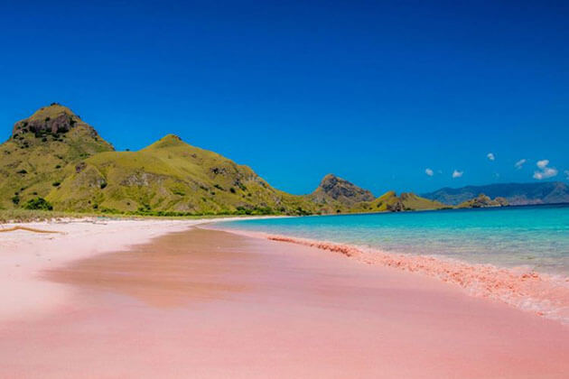 Pink beach - ideal attraction in Lombok