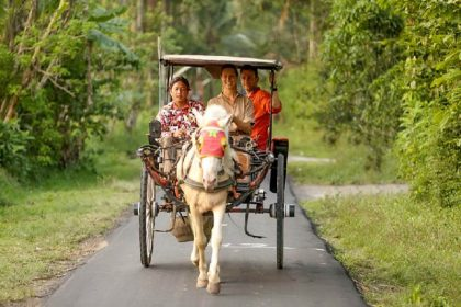 classic java and bali - yogyakarta tour packages