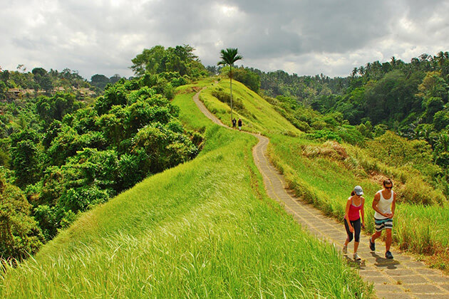 trekking ubud - must do activities in indonesia honeymoon packages