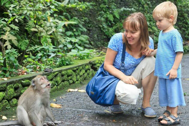 ubud monkey forest - famous attractions for bali family tours